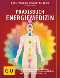 Praxishandbuch Energiemedizin